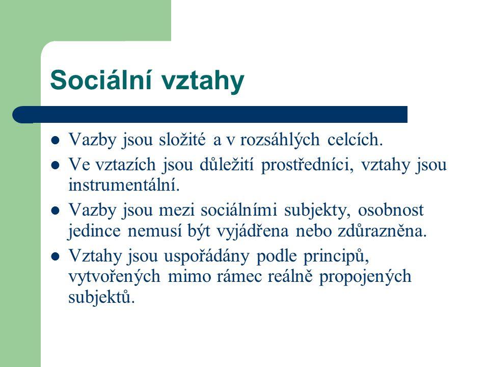 Sociální vztahy Vazby jsou složité a v rozsáhlých celcích. Ve vztazích jsou důležití prostředníci, vztahy jsou instrumentální. Vazby jsou mezi sociáln