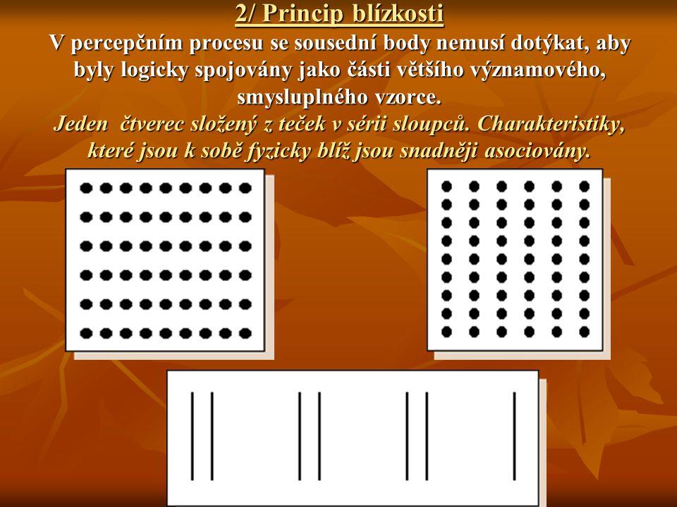 2/ Princip blízkosti V percepčním procesu se sousední body nemusí dotýkat, aby byly logicky spojovány jako části většího významového, smysluplného vzo