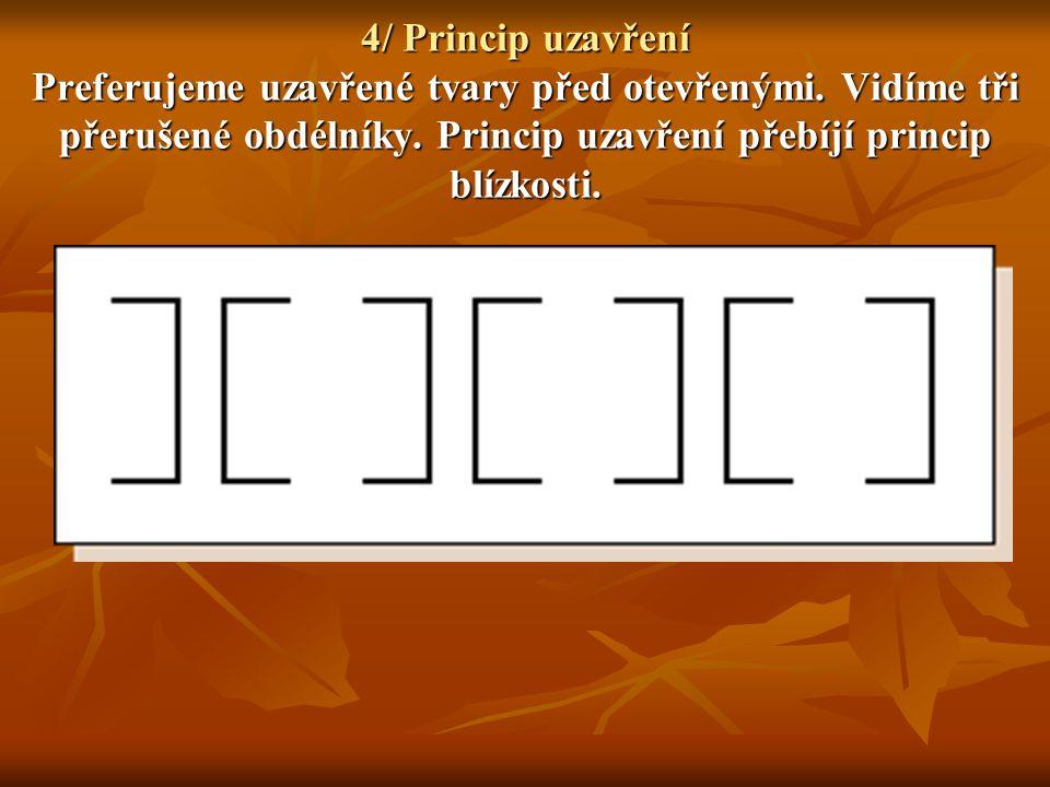 4/ Princip uzavření Preferujeme uzavřené tvary před otevřenými. Vidíme tři přerušené obdélníky. Princip uzavření přebíjí princip blízkosti.