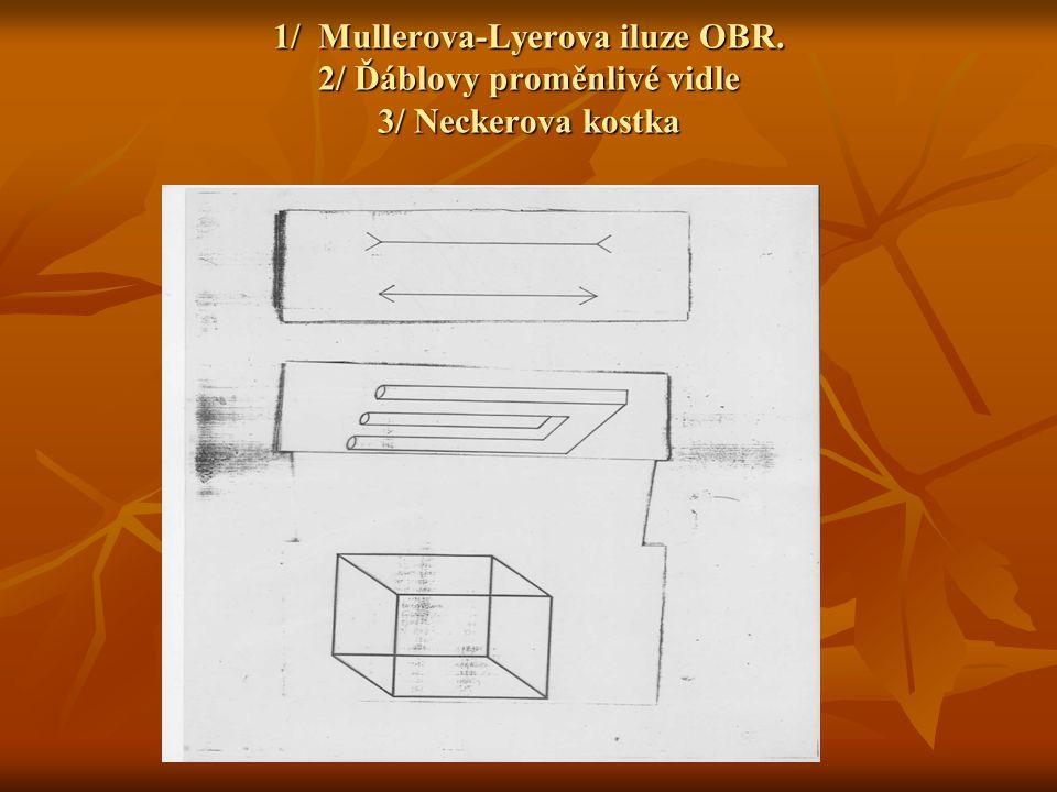1/ Mullerova-Lyerova iluze OBR. 2/ Ďáblovy proměnlivé vidle 3/ Neckerova kostka
