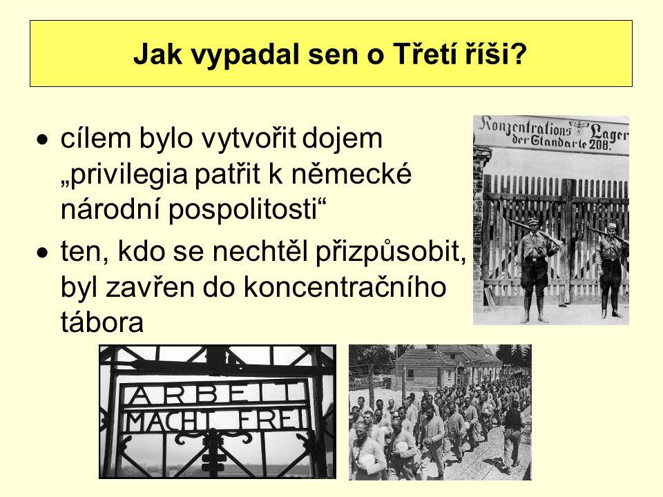 """ cílem bylo vytvořit dojem """"privilegia patřit k německé národní pospolitosti""""  ten, kdo se nechtěl přizpůsobit, byl zavřen do koncentračního tábora"""