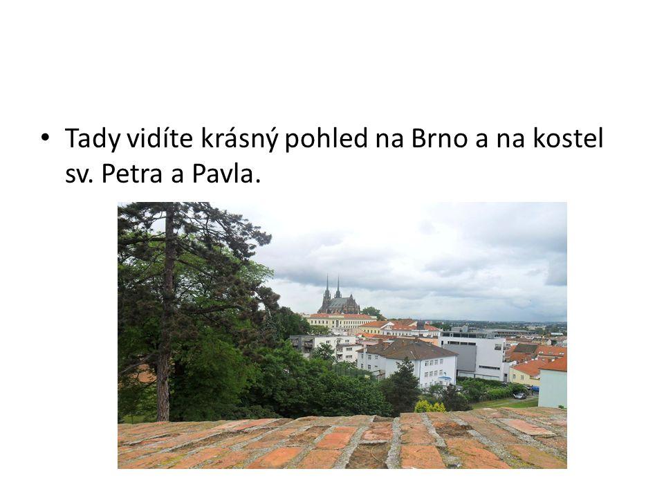 Tady vidíte krásný pohled na Brno a na kostel sv. Petra a Pavla.