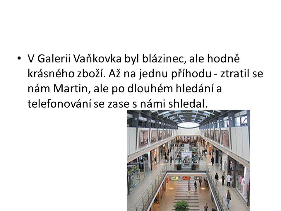 V Galerii Vaňkovka byl blázinec, ale hodně krásného zboží.