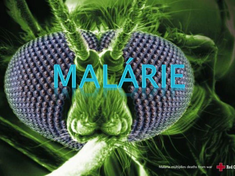  je jednou z nejvýznamnějších a nejzákeřnějších infekčních nemocí  Infekční onemocnění- stav kdy dochází k poškození hostitelského makroorganismu prostřednictvím parazita, který narušuje vnitřní prostředí makroorganismu, aby tak získal prostředí k vlastnímu růstu a množení)  Malárií ročně onemocní asi 500 milionů lidí  Více než milion jich nemoci podlehne, z čehož většina jsou děti mladší 5 let