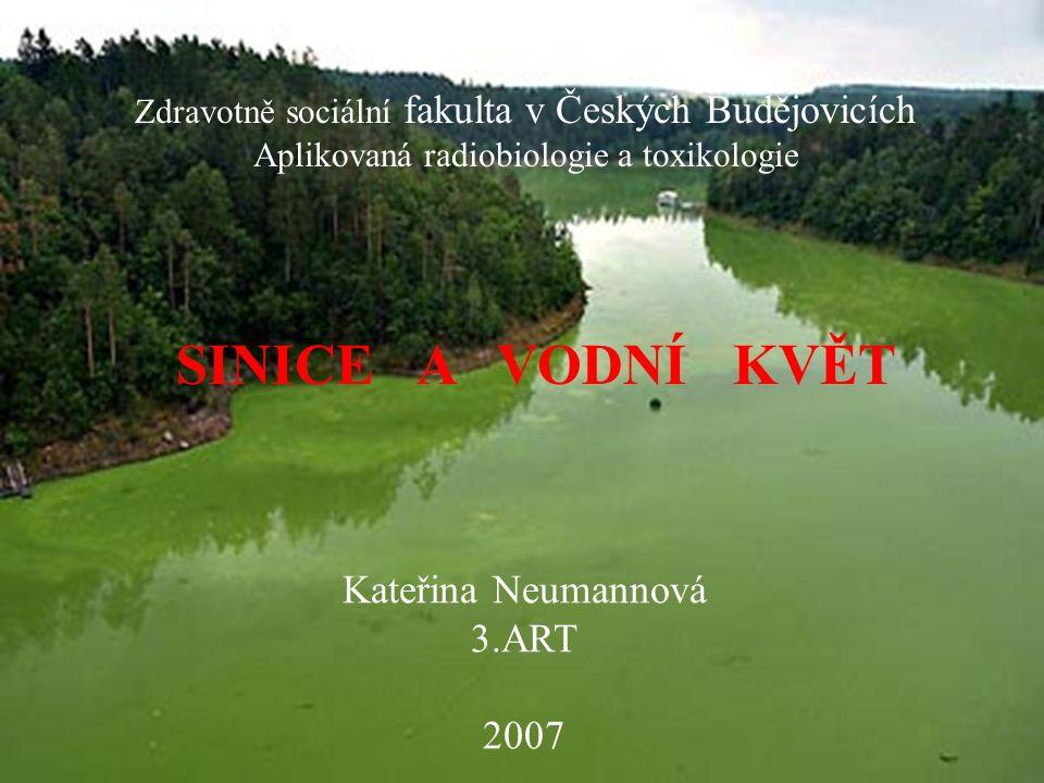 Sinice  Prokaryota (shluk molekul nukleových kyselin)  složkou půdní mikroflóry, sladkovodního i mořského planktonu  fotosyntetizují  široká ekologická šíře (-180°C až 85°C)  nepohlavní rozmnožování (dělení)  klidové formy – výtrusy  symbióza (sinice a lišejník, sinice a čtverzubec)  tvorba vodního květu  tvorba jedovatých toxinů