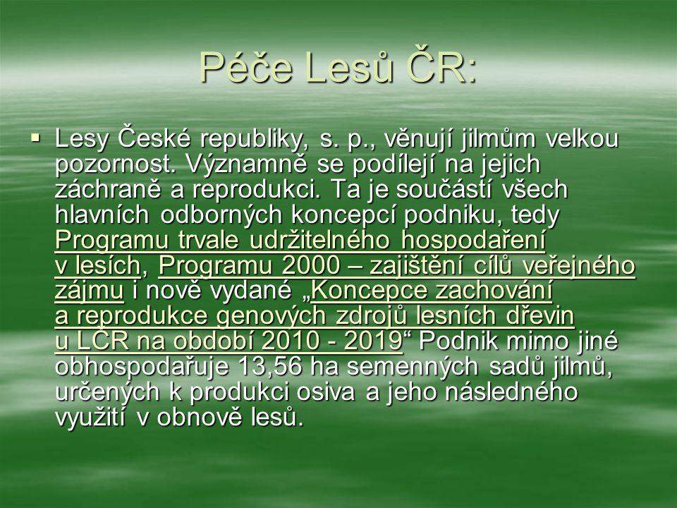 Péče Lesů ČR:  Lesy České republiky, s. p., věnují jilmům velkou pozornost. Významně se podílejí na jejich záchraně a reprodukci. Ta je součástí všec