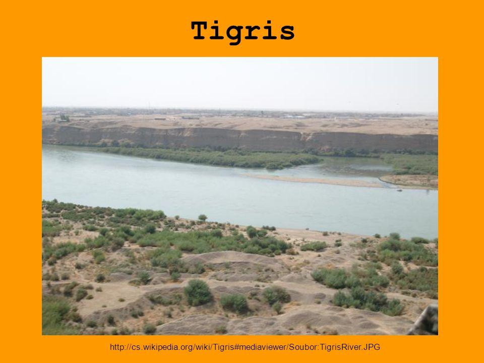 Tigris http://cs.wikipedia.org/wiki/Tigris#mediaviewer/Soubor:TigrisRiver.JPG