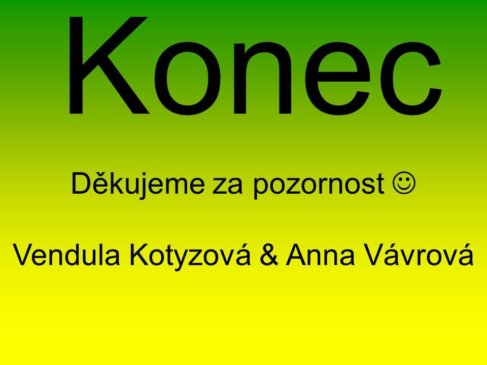 Konec Děkujeme za pozornost Vendula Kotyzová & Anna Vávrová