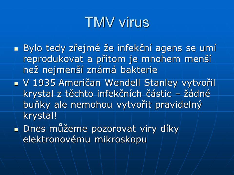 Nové viry Celkem tři procesy dávají vznik novým virovým chorobám Celkem tři procesy dávají vznik novým virovým chorobám Mutace již existujícího viru.