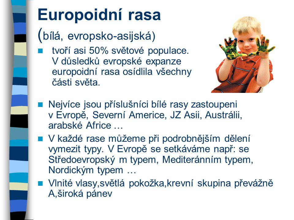 Europoidní rasa ( bílá, evropsko-asijská) Nejvíce jsou příslušníci bílé rasy zastoupeni v Evropě, Severní Americe, JZ Asii, Austrálii, arabské Africe