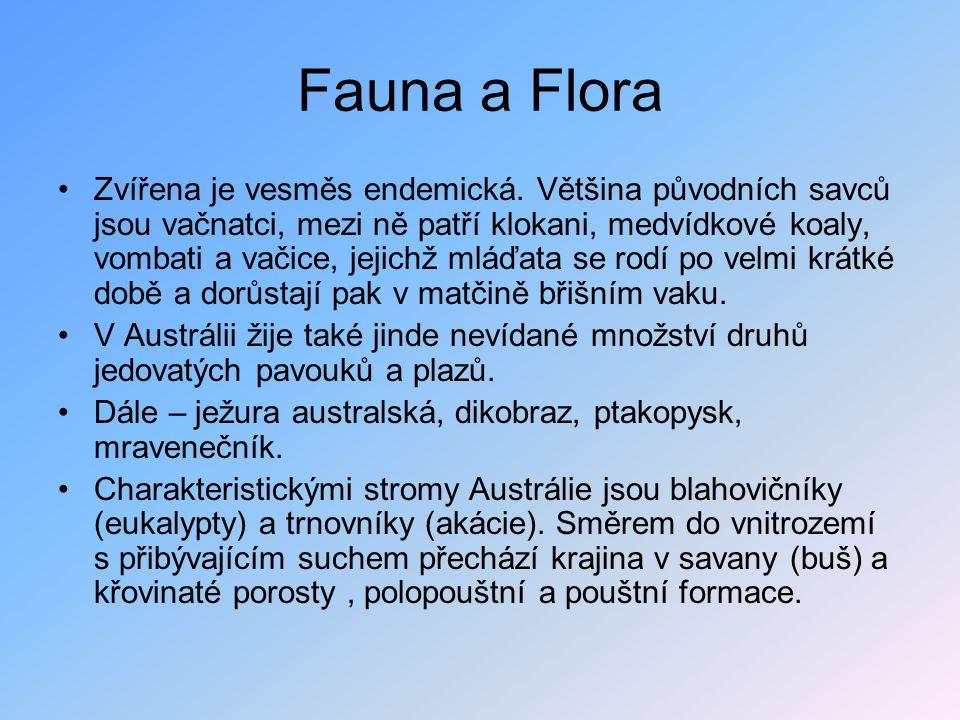 Fauna a Flora Zvířena je vesměs endemická. Většina původních savců jsou vačnatci, mezi ně patří klokani, medvídkové koaly, vombati a vačice, jejichž m
