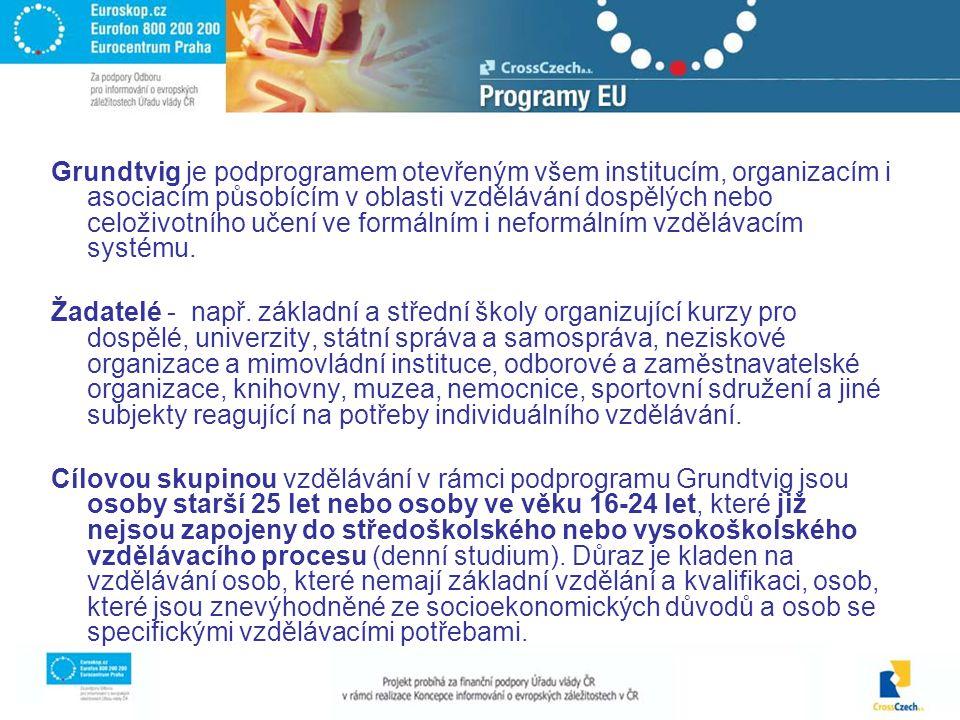 Grundtvig je podprogramem otevřeným všem institucím, organizacím i asociacím působícím v oblasti vzdělávání dospělých nebo celoživotního učení ve formálním i neformálním vzdělávacím systému.