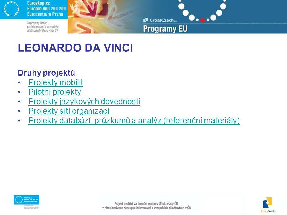 LEONARDO DA VINCI Druhy projektů Projekty mobilit Pilotní projekty Projekty jazykových dovedností Projekty sítí organizací Projekty databází, průzkumů a analýz (referenční materiály)