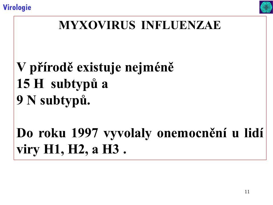 11 Virologie MYXOVIRUS INFLUENZAE V přírodě existuje nejméně 15 H subtypů a 9 N subtypů.
