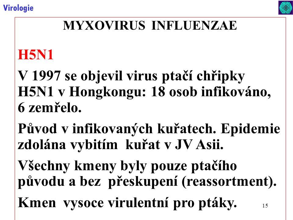 15 Virologie MYXOVIRUS INFLUENZAE H5N1 V 1997 se objevil virus ptačí chřipky H5N1 v Hongkongu: 18 osob infikováno, 6 zemřelo.