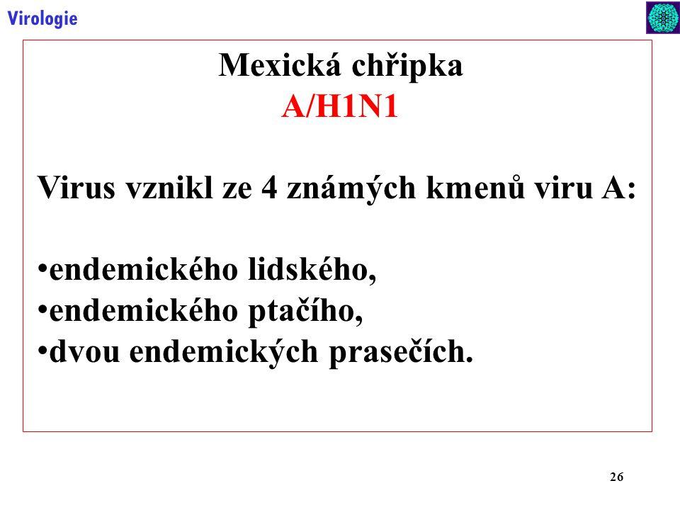 26 Virologie Mexická chřipka A/H1N1 Virus vznikl ze 4 známých kmenů viru A: endemického lidského, endemického ptačího, dvou endemických prasečích.