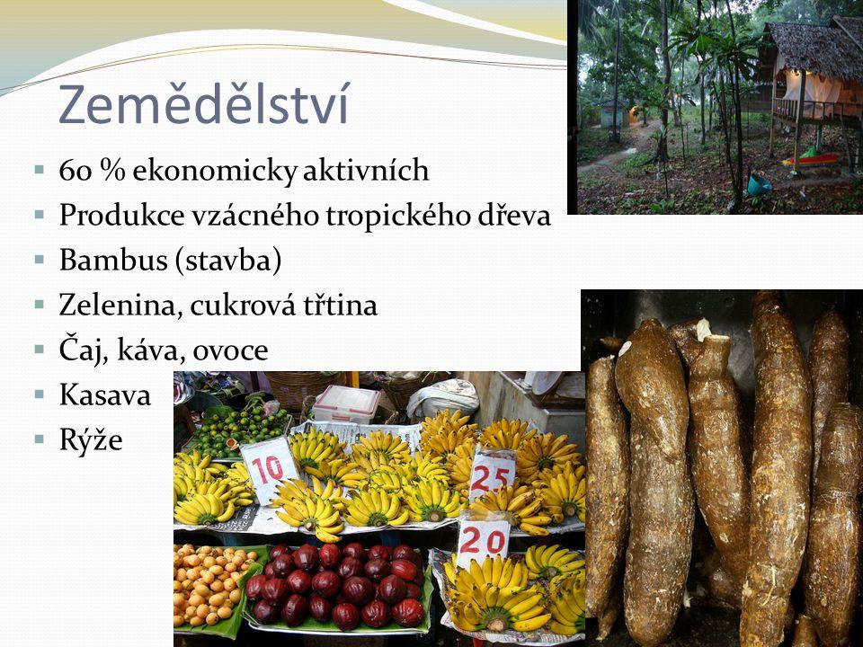 Zemědělství  60 % ekonomicky aktivních  Produkce vzácného tropického dřeva  Bambus (stavba)  Zelenina, cukrová třtina  Čaj, káva, ovoce  Kasava  Rýže