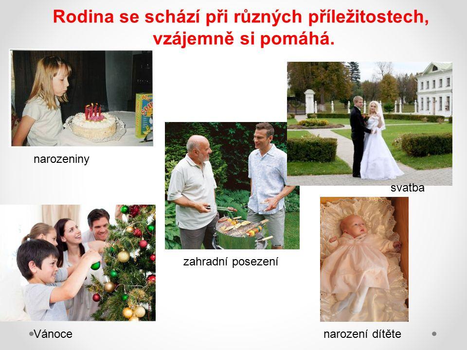 Rodina se schází při různých příležitostech, vzájemně si pomáhá. svatba narozeniny Vánocenarození dítěte zahradní posezení