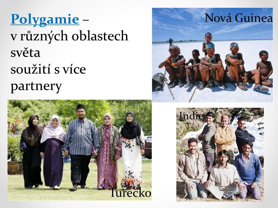 Polygamie – v různých oblastech světa soužití s více partnery Nová Guinea Turecko Indie