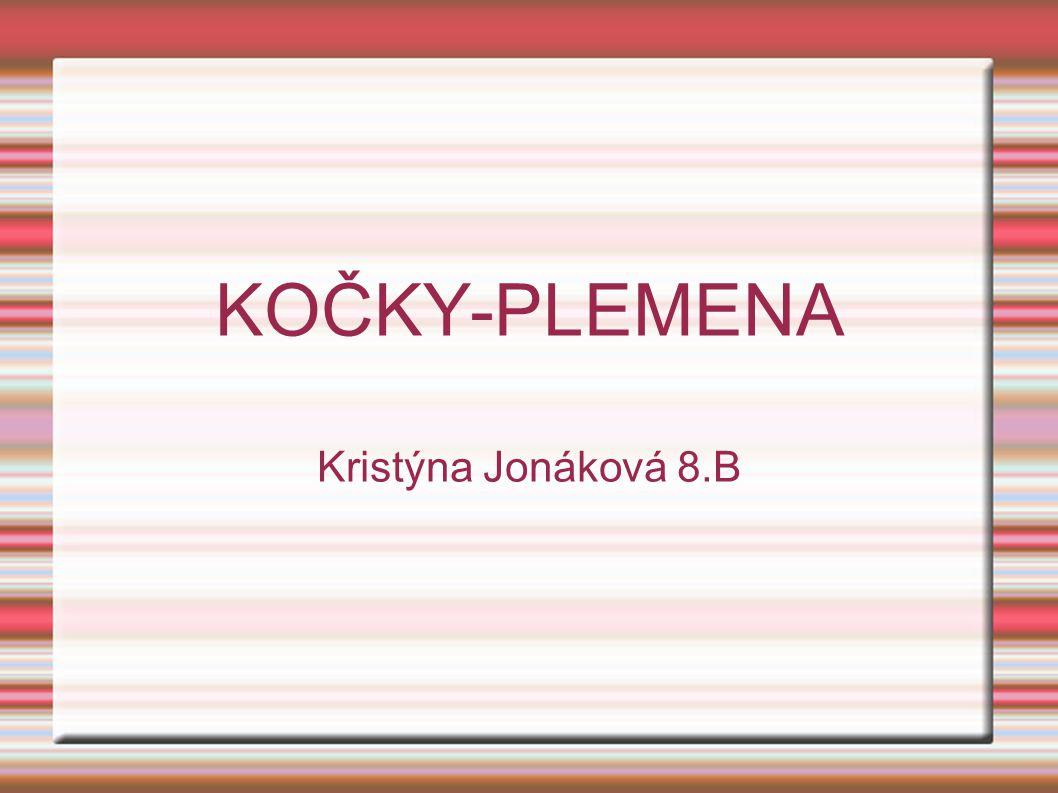 KOČKY-PLEMENA Kristýna Jonáková 8.B
