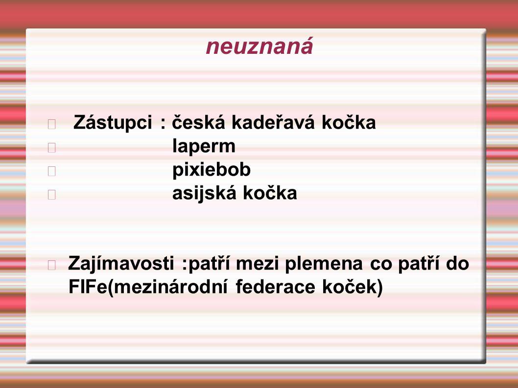 neuznaná Zástupci : česká kadeřavá kočka laperm pixiebob asijská kočka Zajímavosti :patří mezi plemena co patří do FIFe(mezinárodní federace koček)