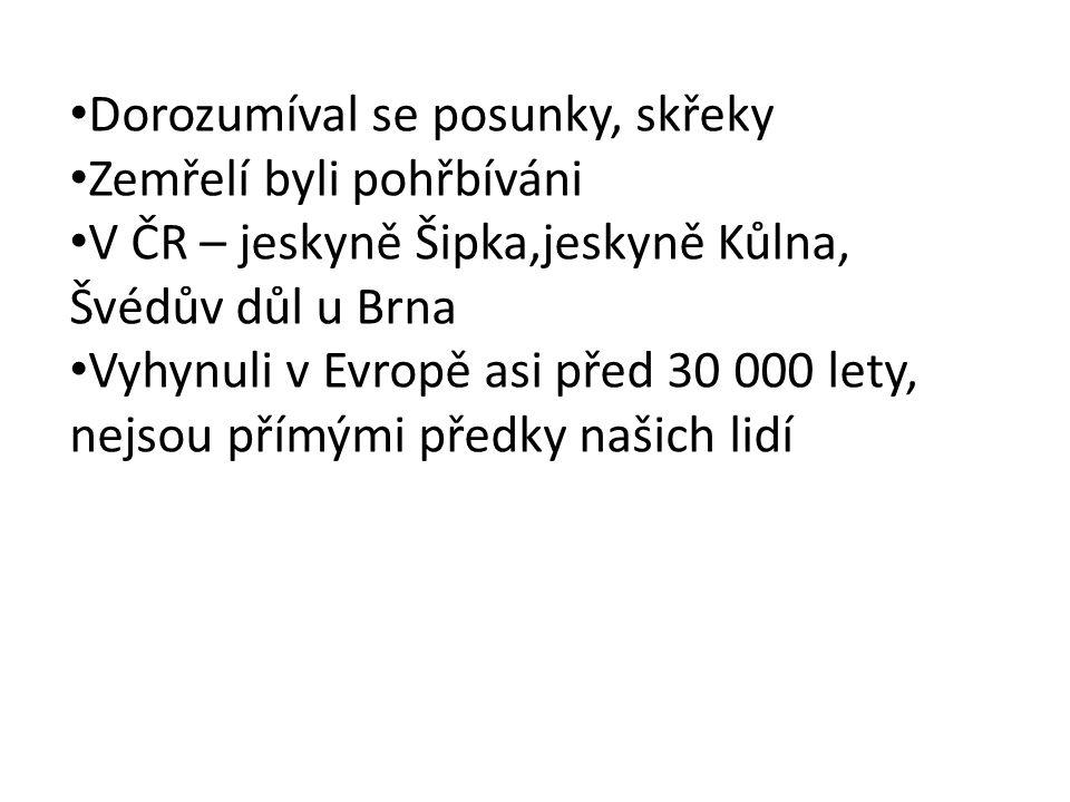 Dorozumíval se posunky, skřeky Zemřelí byli pohřbíváni V ČR – jeskyně Šipka,jeskyně Kůlna, Švédův důl u Brna Vyhynuli v Evropě asi před 30 000 lety, n
