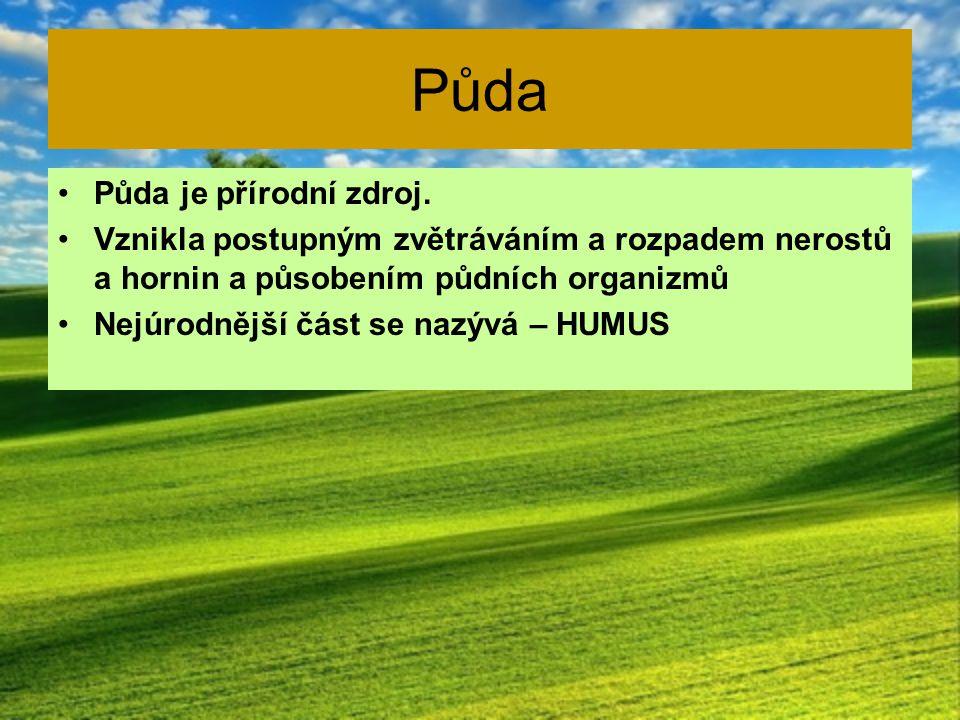 Složení půdy HUMUS vrchní tmavá část půdy VLASTNÍ PŮDA zvětralé části nerostů a hornin PŮVODNÍ PEVNÁ HORNINA nejhlubší vrstva Půda také obsahuje – půdní vodu, půdní vzduch a živé organizmy.
