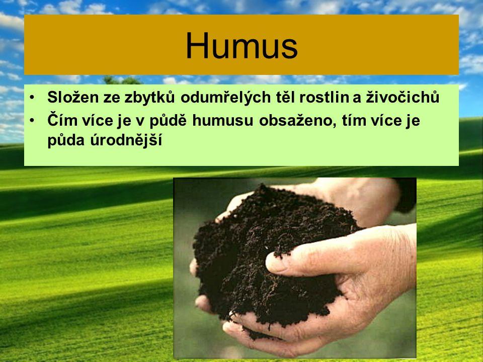 Rostlinná výroba Pěstování hospodářských rostlin (pole, vinice, chmelnice..)