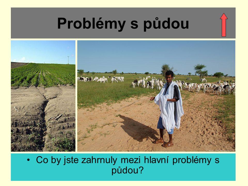 Problémy s půdou Co by jste zahrnuly mezi hlavní problémy s půdou?