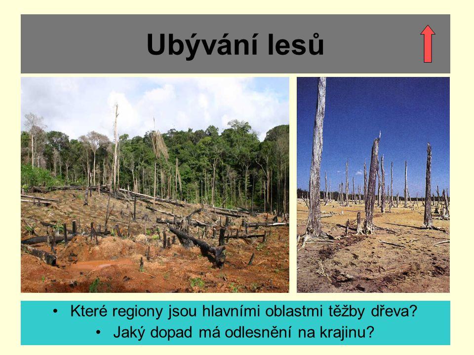 Ubývání lesů Které regiony jsou hlavními oblastmi těžby dřeva? Jaký dopad má odlesnění na krajinu?