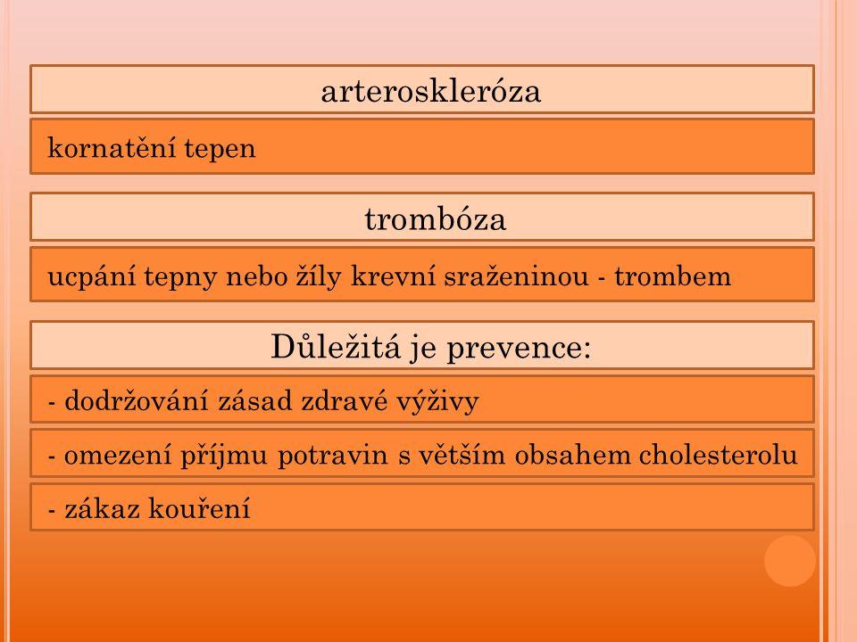 arteroskleróza kornatění tepen trombóza ucpání tepny nebo žíly krevní sraženinou - trombem Důležitá je prevence: - dodržování zásad zdravé výživy - omezení příjmu potravin s větším obsahem cholesterolu - zákaz kouření
