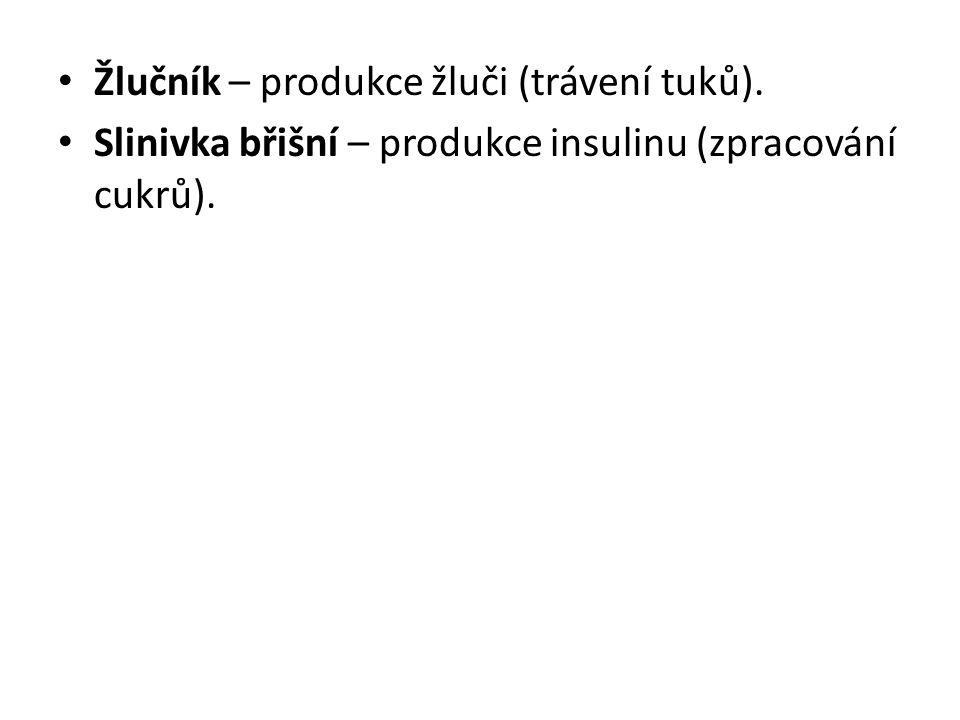 Žlučník – produkce žluči (trávení tuků). Slinivka břišní – produkce insulinu (zpracování cukrů).
