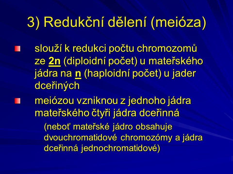 3) Redukční dělení (meióza) slouží k redukci počtu chromozomů ze 2n (diploidní počet) u mateřského jádra na n (haploidní počet) u jader dceřiných meiózou vzniknou z jednoho jádra mateřského čtyři jádra dceřinná (neboť mateřské jádro obsahuje dvouchromatidové chromozómy a jádra dceřinná jednochromatidové)