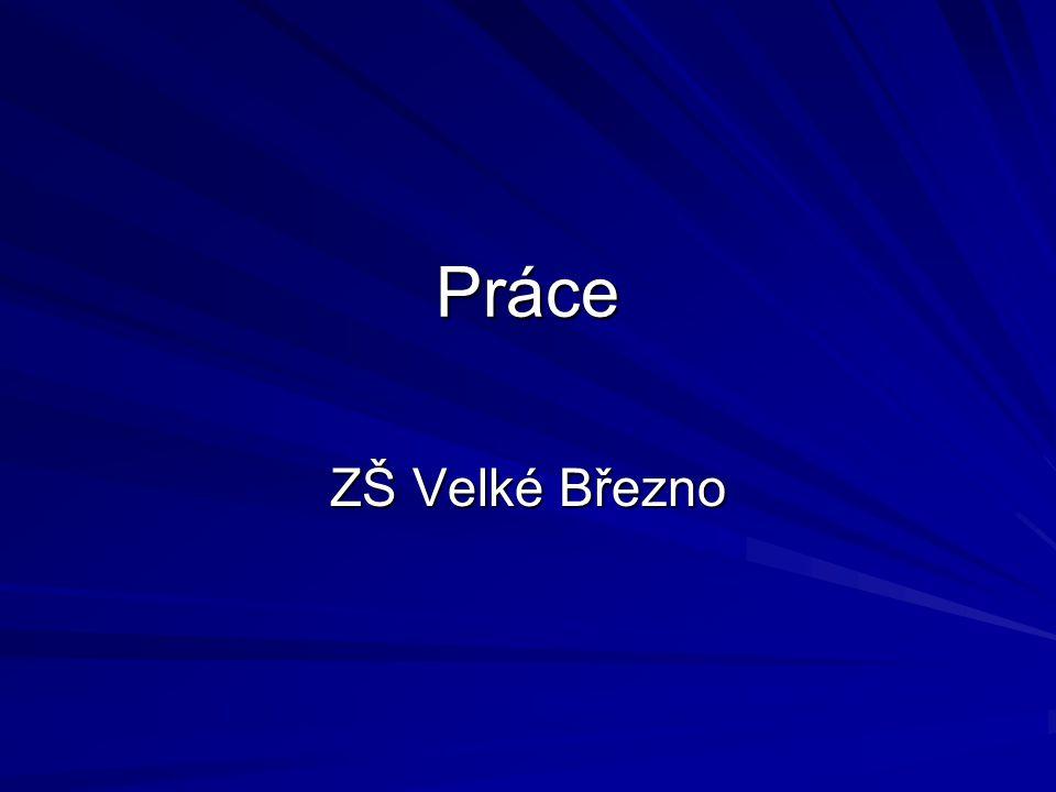 Práce ZŠ Velké Březno