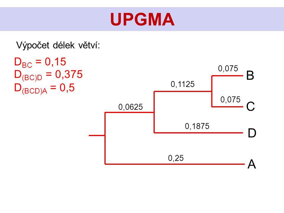 C B D A UPGMA Výpočet délek větví: D BC = 0,15 D (BC)D = 0,375 D (BCD)A = 0,5 0,075 0,1875 0,1125 0,25 0,0625