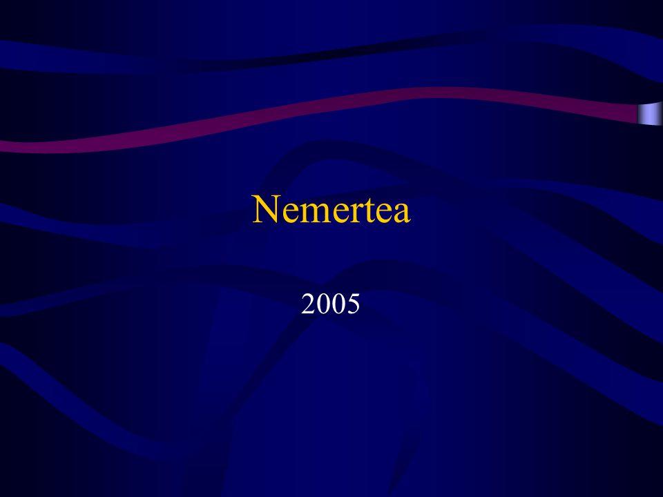 Nemertea 2005