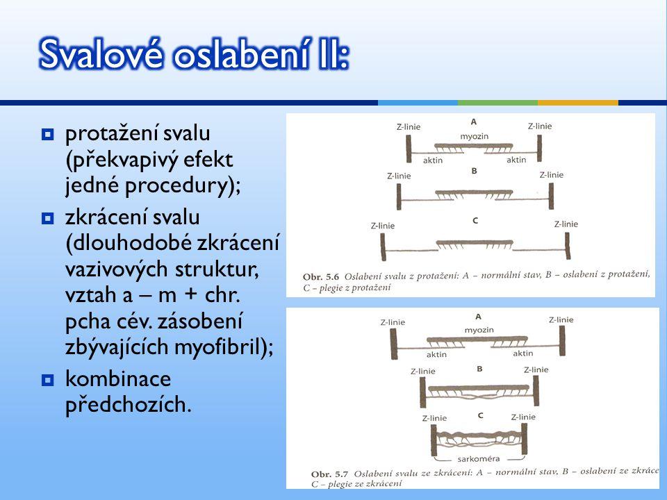  protažení svalu (překvapivý efekt jedné procedury);  zkrácení svalu (dlouhodobé zkrácení vazivových struktur, vztah a – m + chr.