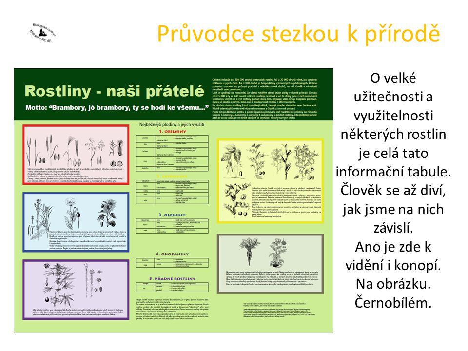 Průvodce stezkou k přírodě O velké užitečnosti a využitelnosti některých rostlin je celá tato informační tabule.