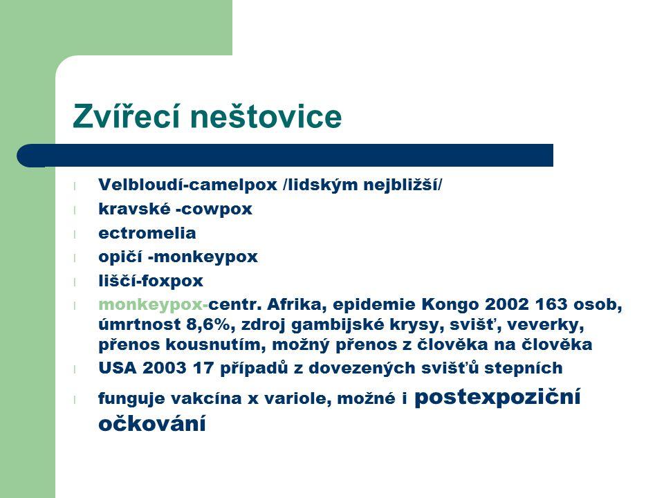 Zvířecí neštovice l Velbloudí-camelpox /lidským nejbližší/ l kravské -cowpox l ectromelia l opičí -monkeypox l liščí-foxpox l monkeypox-centr. Afrika,