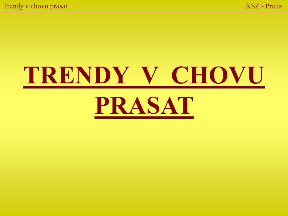 TRENDY V CHOVU PRASAT Trendy v chovu prasat KSZ - Praha