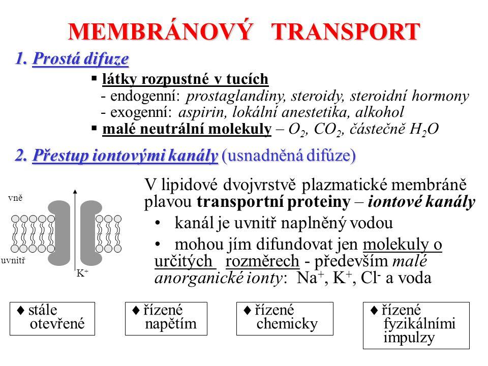 MEMBRÁNOVÝ TRANSPORT 1.