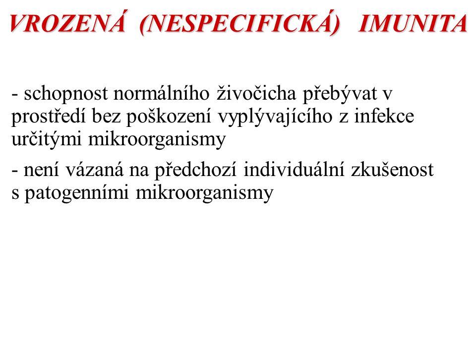 VROZENÁ (NESPECIFICKÁ) IMUNITA BUNĚČNÁ HUMORÁLNÍ MONOCYTY / MAKROFÁGY GRANULOCYTY -fagocytóza NK BUŇKY (natural killers) - přirozená toxicita KOMPLEMENT -alternativní cesta LEKTINY -C reaktivní protein INTERLEUKINY INTERFERONY