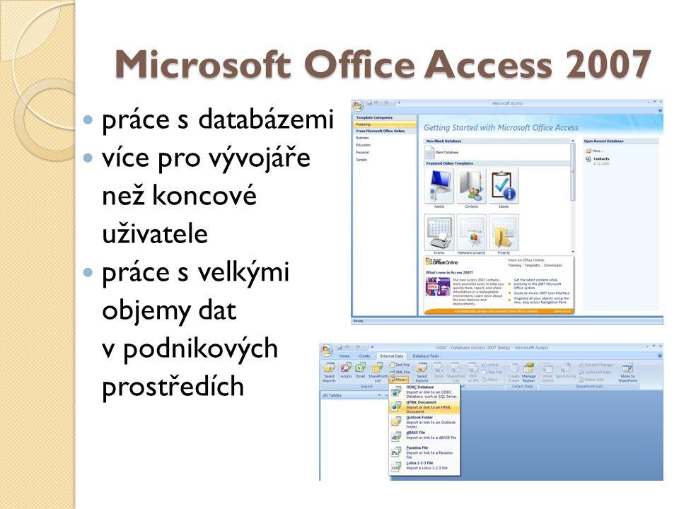Microsoft Office Access 2007 práce s databázemi více pro vývojáře než koncové uživatele práce s velkými objemy dat v podnikových prostředích