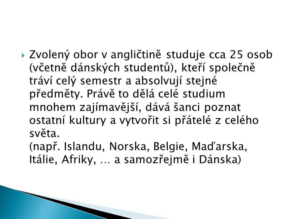  Zvolený obor v angličtině studuje cca 25 osob (včetně dánských studentů), kteří společně tráví celý semestr a absolvují stejné předměty.