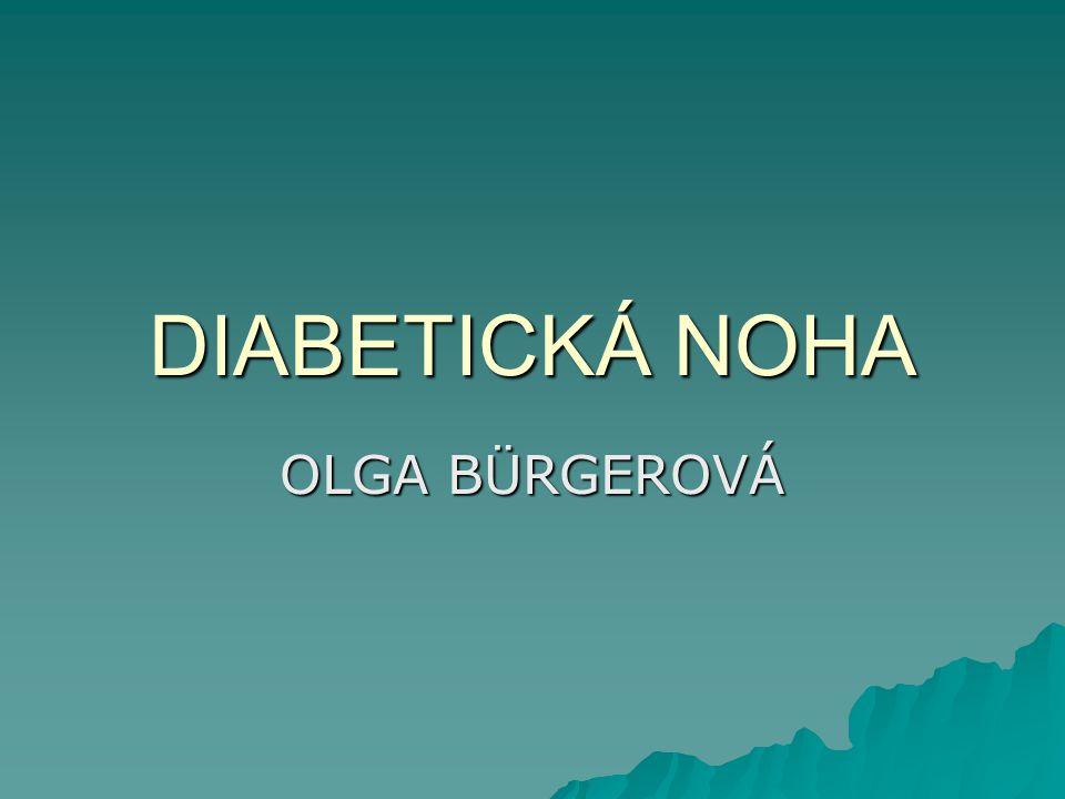 DIABETICKÁ NOHA OLGA BÜRGEROVÁ