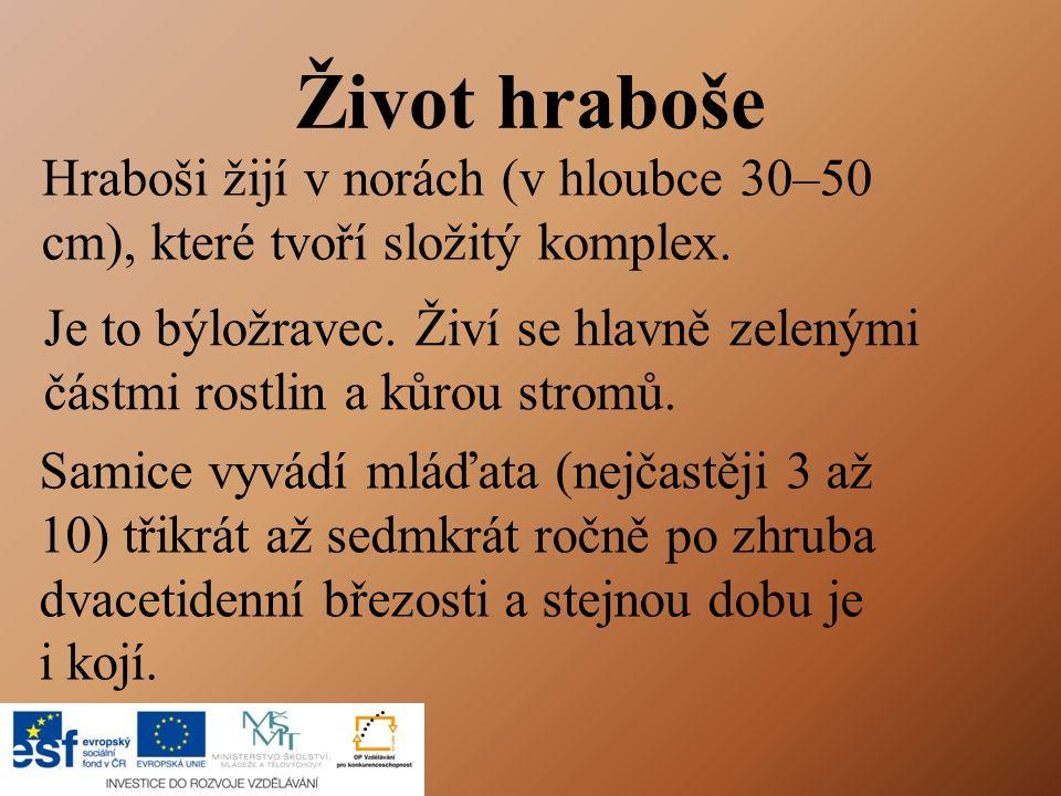 Zdroje PŘÍRODOVĚDA, Pracovní sešit pro 4.ročník. Jurčák, Jaroslav a kol.