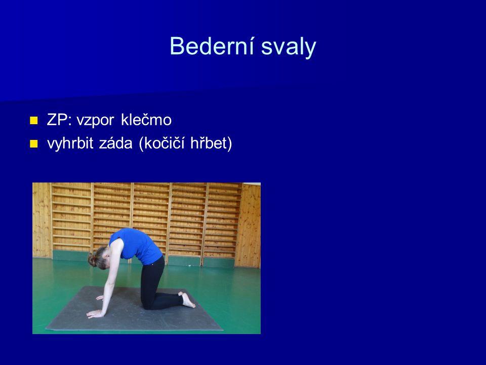 Bederní svaly ZP: vzpor klečmo vyhrbit záda (kočičí hřbet)