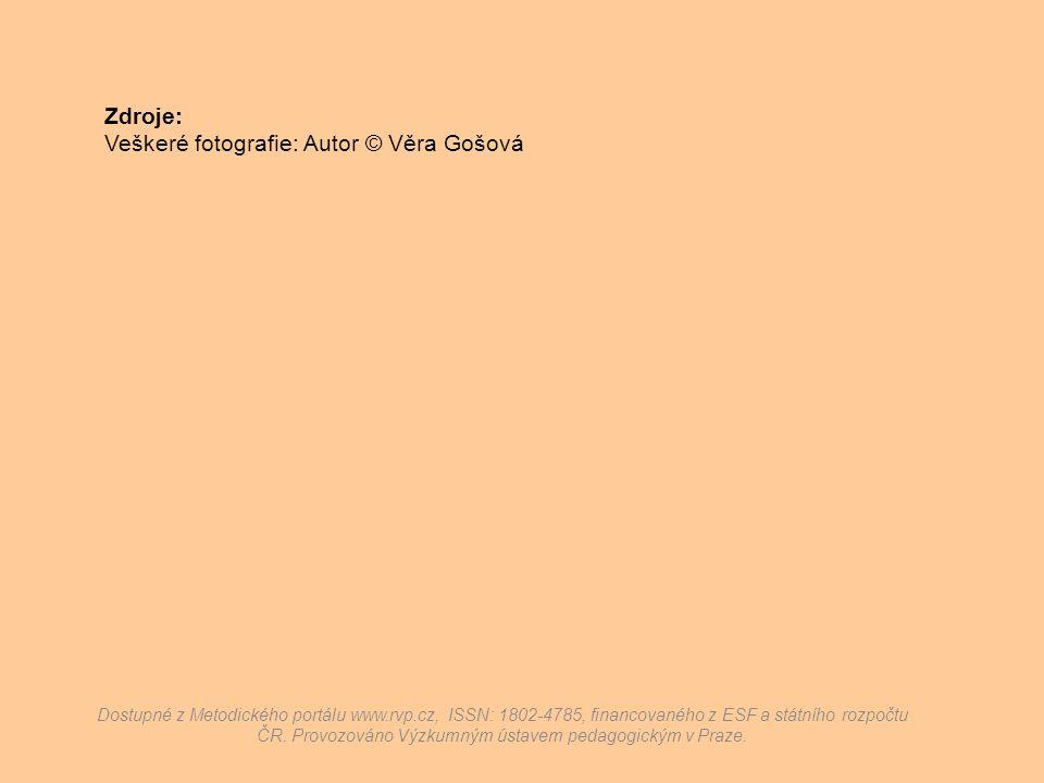 Zdroje: Veškeré fotografie: Autor © Věra Gošová Dostupné z Metodického portálu www.rvp.cz, ISSN: 1802-4785, financovaného z ESF a státního rozpočtu ČR