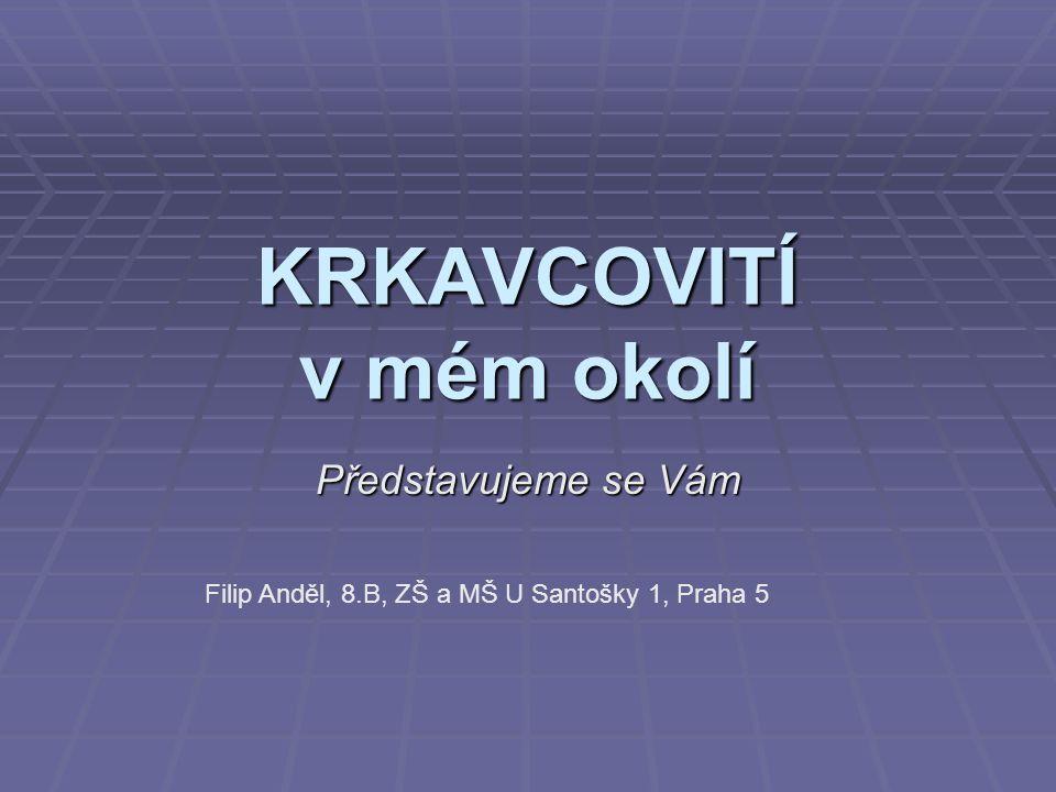 KRKAVCOVITÍ v mém okolí Představujeme se Vám Filip Anděl, 8.B, ZŠ a MŠ U Santošky 1, Praha 5