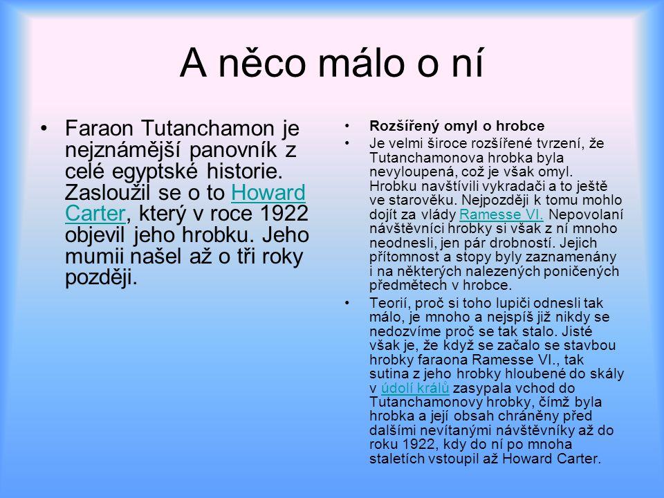 Původ Tutanchamona Egyptologové zatím nevědí zcela přesně kdo Tutanchamon doopravdy byl, kdo byl jeho otcem a z jakého titulu nastoupil na trůn[1].